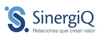 Sinergiq - Asesoría en relaciones institucionales e internacionales